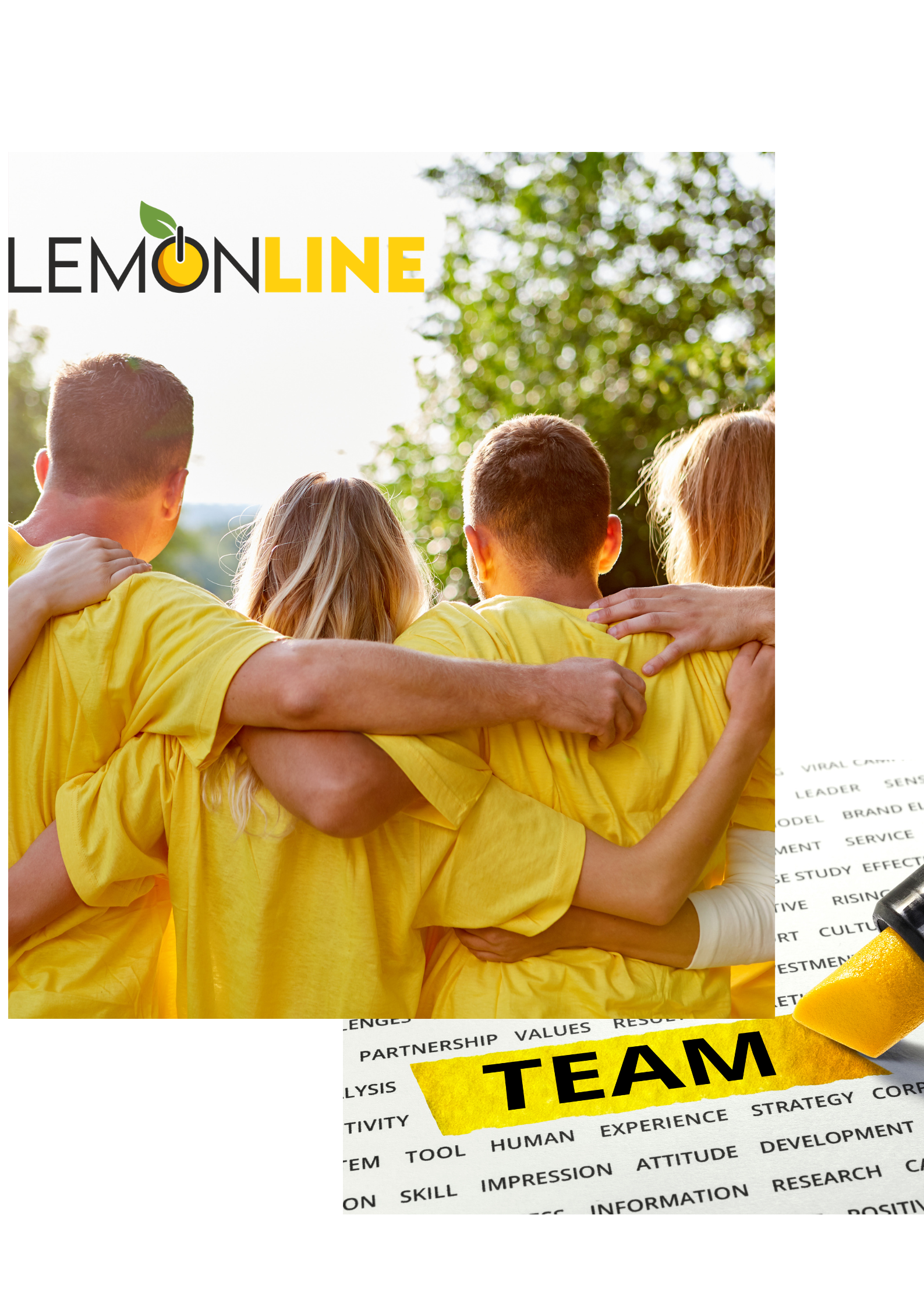 Lemonline promovare website